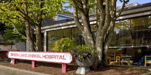 Green Lake Animal Hospital - Seattle Veterinary Associates