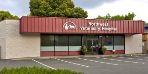 Northwest Veterinary Hospital - Seattle Veterinary Associates