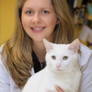 Valissitie Heeren - Seattle Veterinary Associates