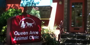 Queen Anne Animal Clinic - Seattle Veterinary Associates