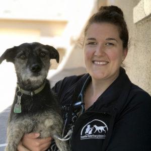 Kasey Schmidt - Seattle Veterinary Associates