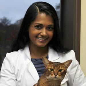 Joyeeta De - Seattle Veterinary Associates